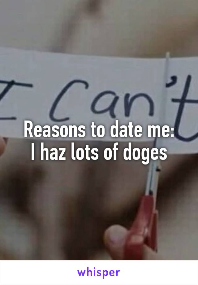 Reasons to date me: I haz lots of doges