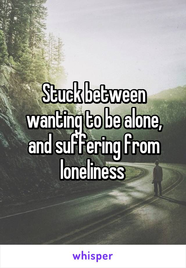 Stuck between wanting to be alone, and suffering from loneliness