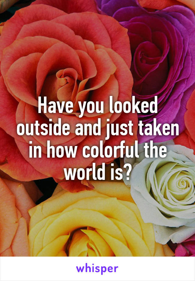 Have you looked outside and just taken in how colorful the world is?