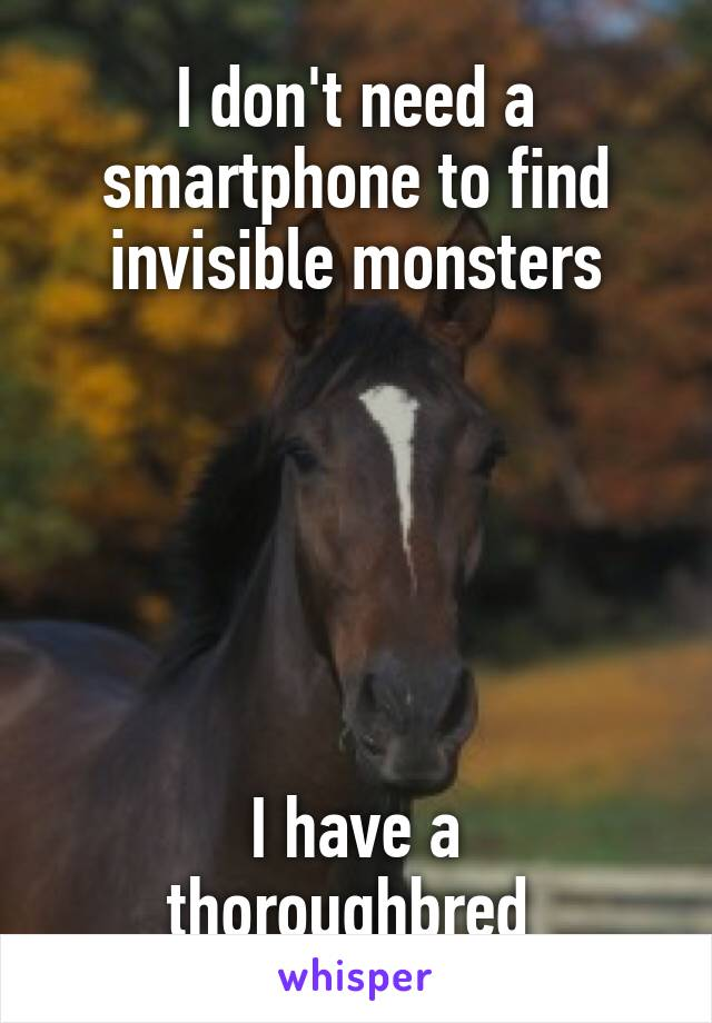 I don't need a smartphone to find invisible monsters       I have a thoroughbred