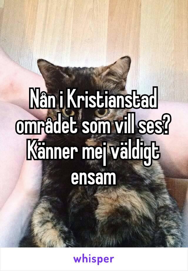 Nån i Kristianstad området som vill ses? Känner mej väldigt ensam