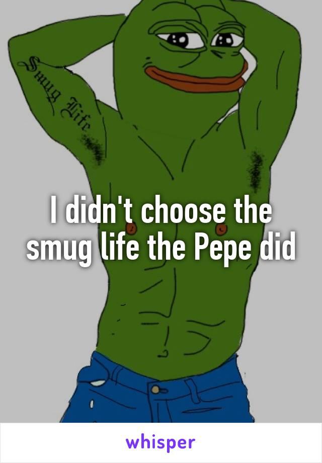 I didn't choose the smug life the Pepe did
