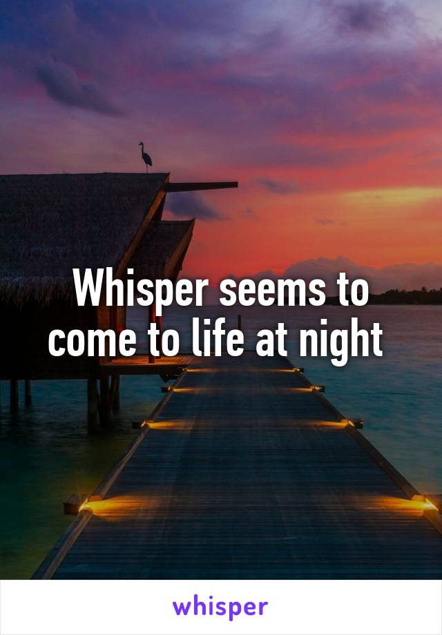 Whisper seems to come to life at night