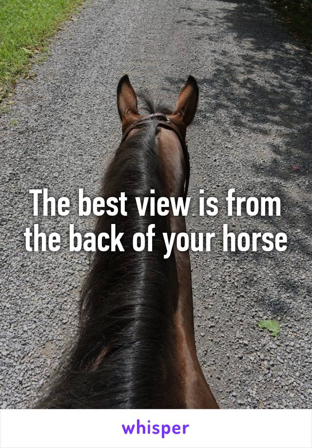 The best view is from the back of your horse