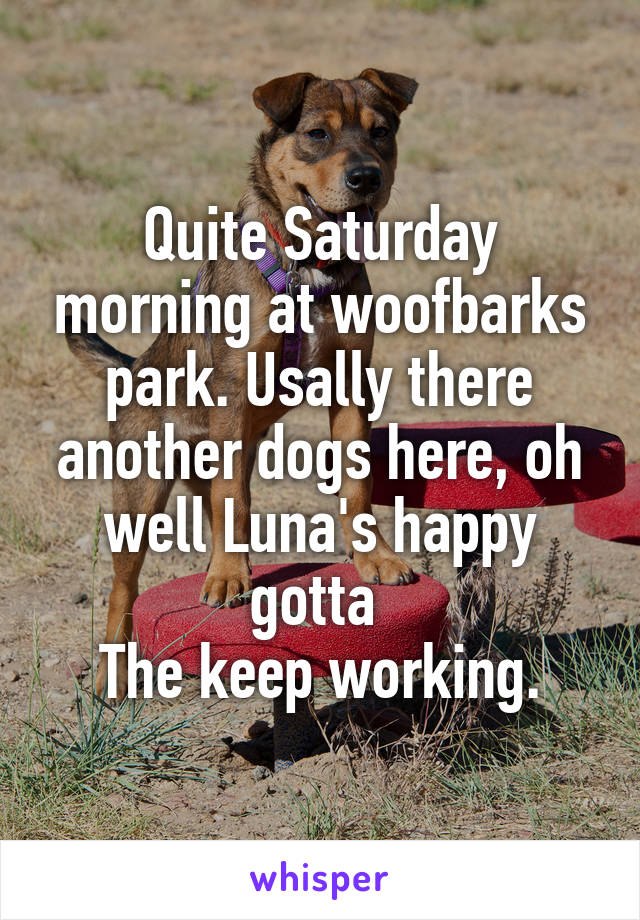 Quite Saturday morning at woofbarks park. Usally there another dogs here, oh well Luna's happy gotta  The keep working.