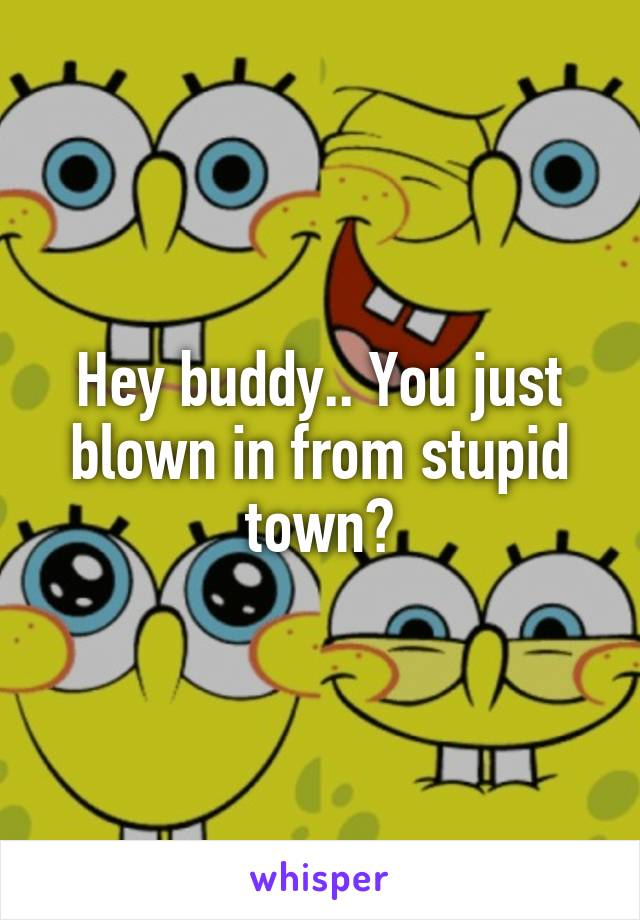 Hey buddy.. You just blown in from stupid town?