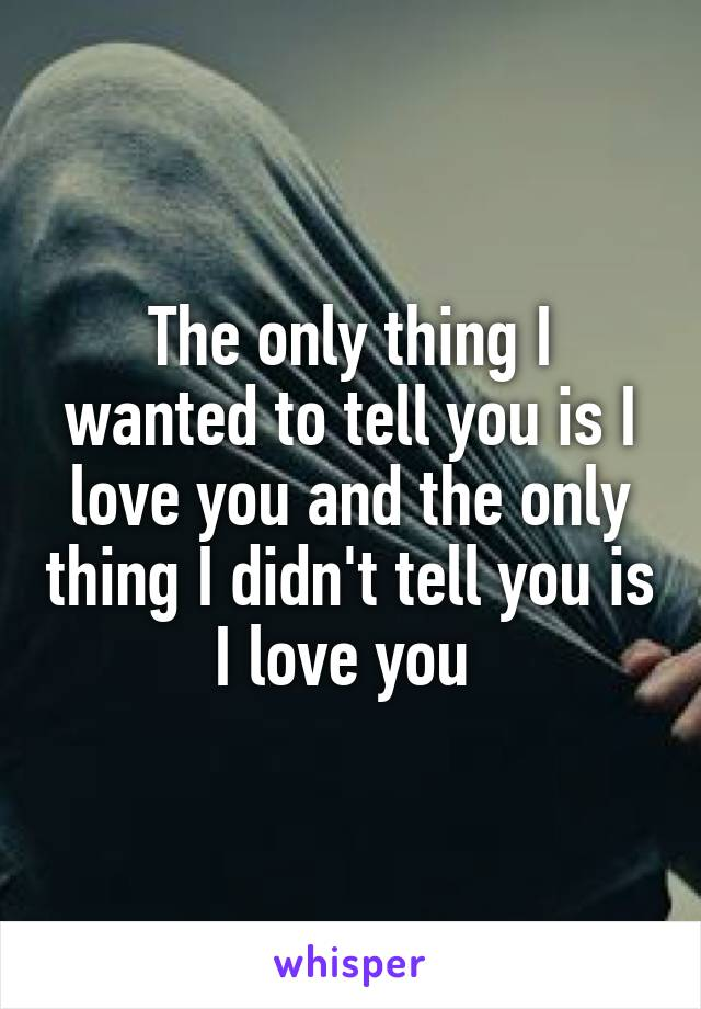 The only thing I wanted to tell you is I love you and the only thing I didn't tell you is I love you