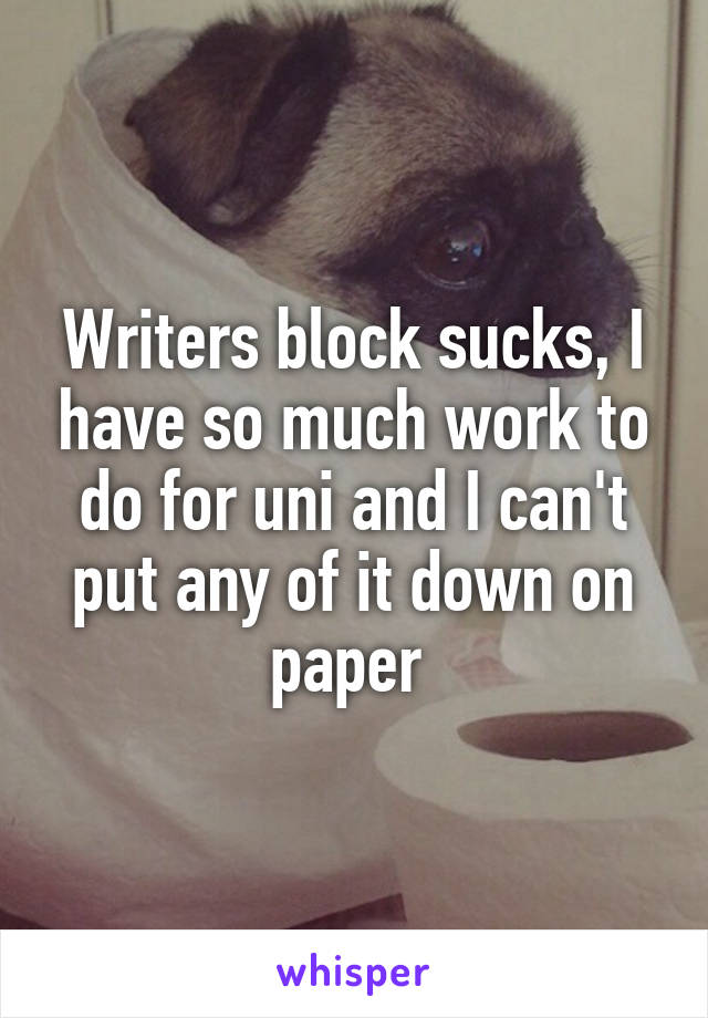 Writers block sucks, I have so much work to do for uni and I can't put any of it down on paper
