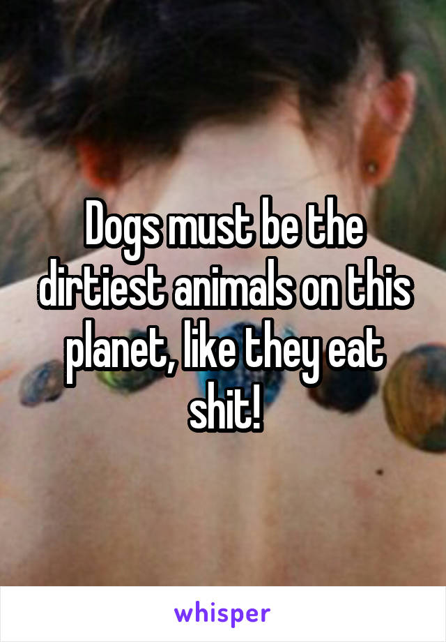 Dogs must be the dirtiest animals on this planet, like they eat shit!