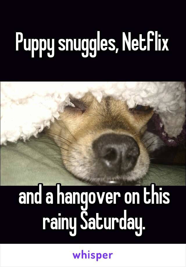 Puppy snuggles, Netflix       and a hangover on this rainy Saturday.