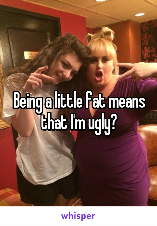 Being a little fat means that I'm ugly?
