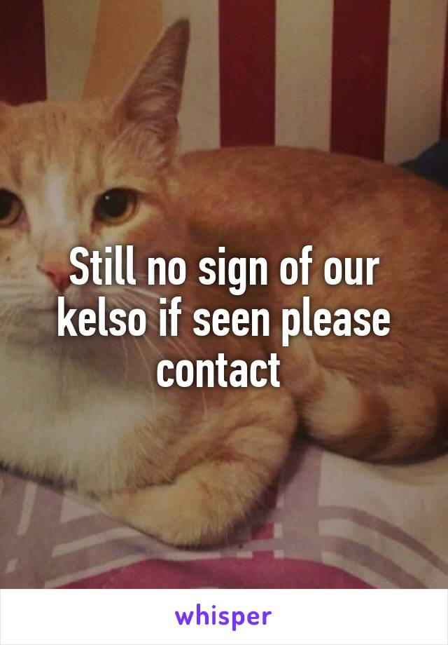 Still no sign of our kelso if seen please contact