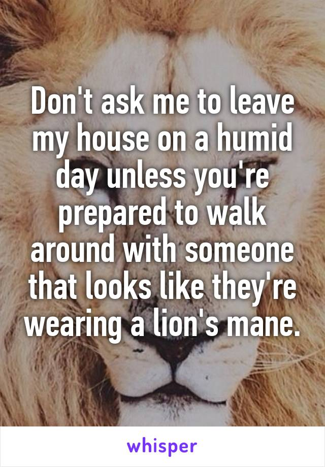 Don't ask me to leave my house on a humid day unless you're prepared to walk around with someone that looks like they're wearing a lion's mane.