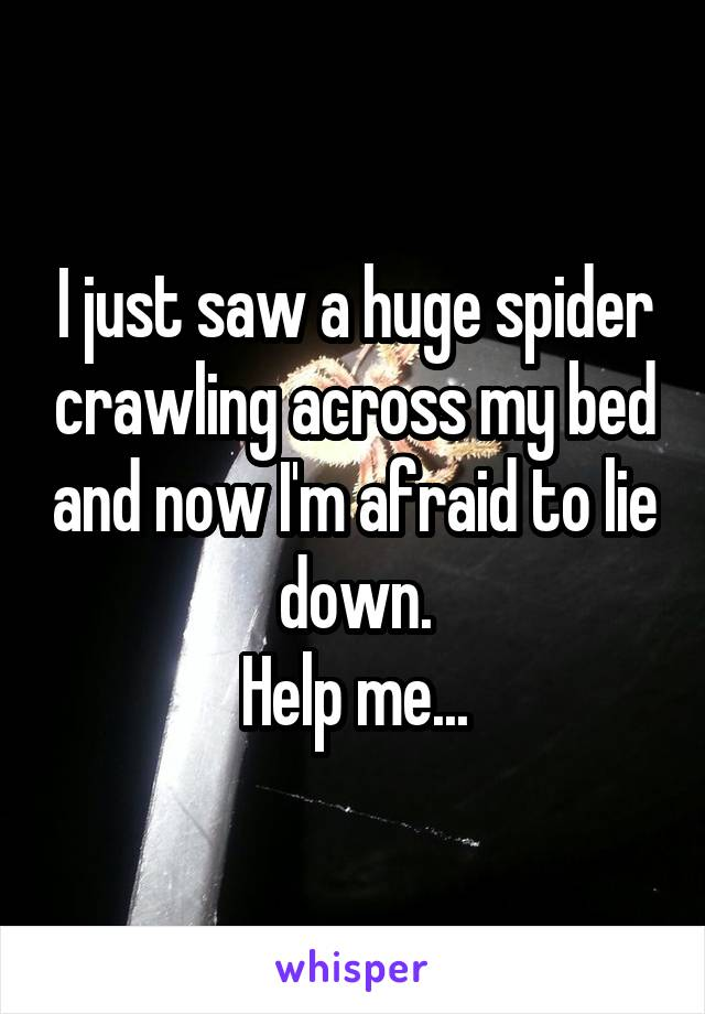 I just saw a huge spider crawling across my bed and now I'm afraid to lie down. Help me...