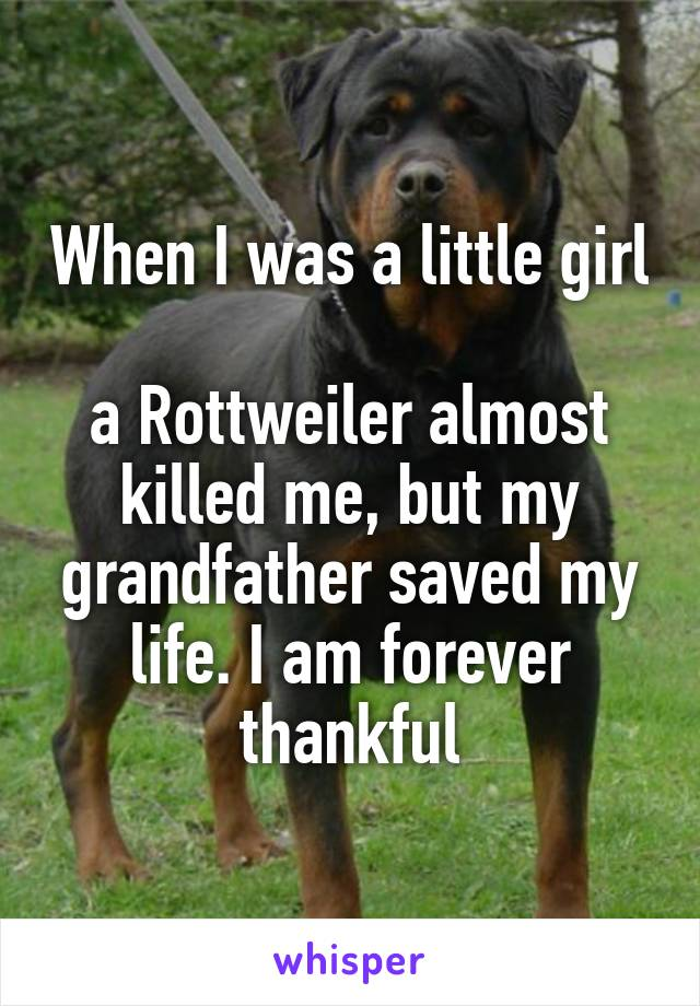 When I was a little girl  a Rottweiler almost killed me, but my grandfather saved my life. I am forever thankful