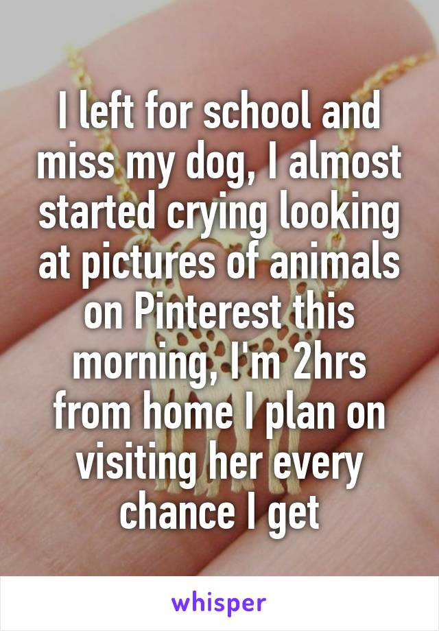 I left for school and miss my dog, I almost started crying looking at pictures of animals on Pinterest this morning, I'm 2hrs from home I plan on visiting her every chance I get