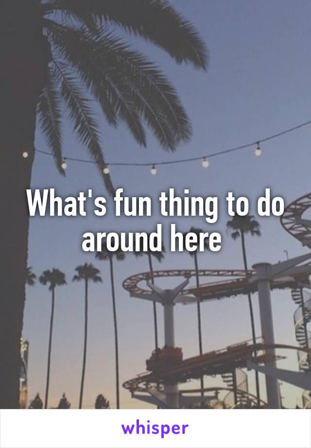 What's fun thing to do around here