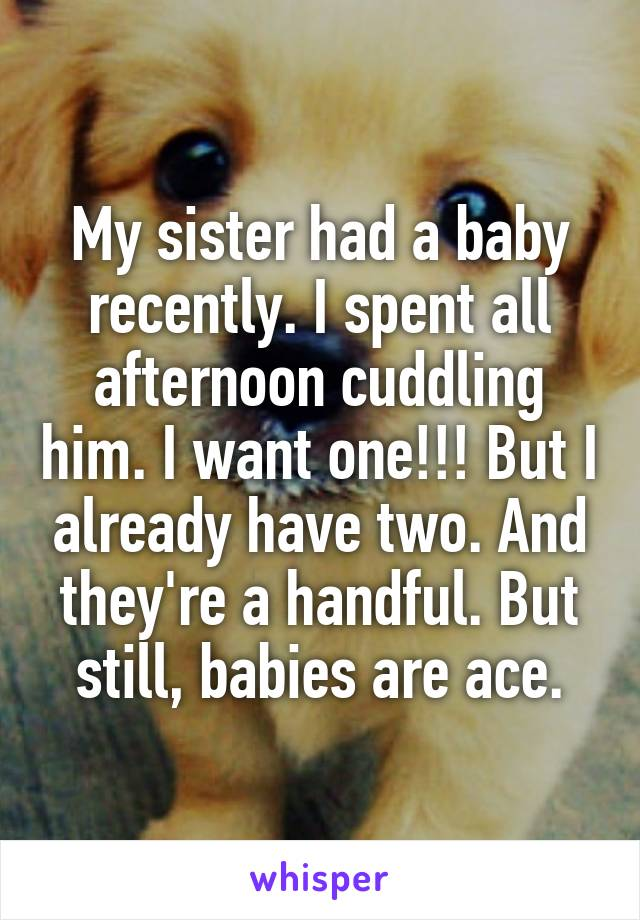 My sister had a baby recently. I spent all afternoon cuddling him. I want one!!! But I already have two. And they're a handful. But still, babies are ace.