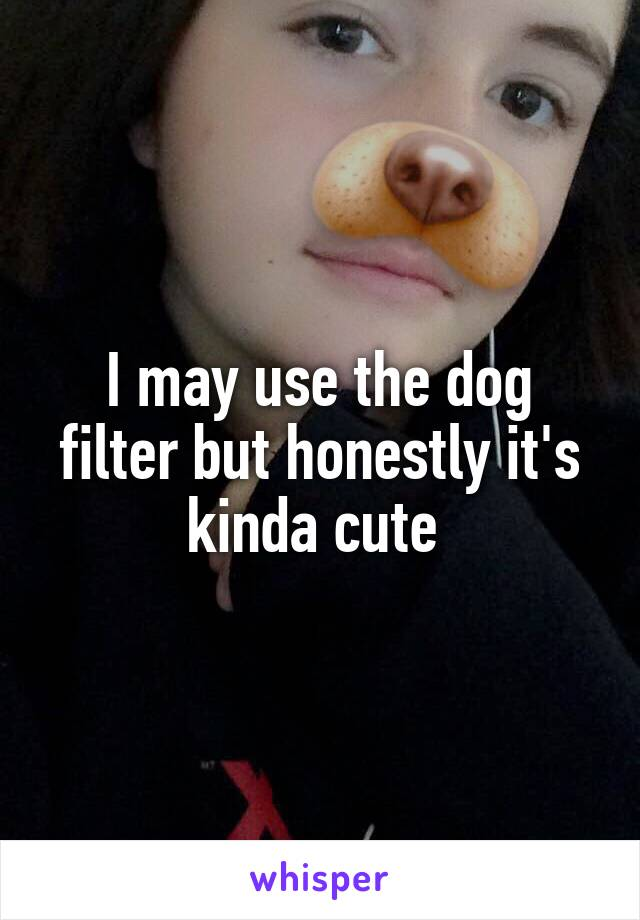 I may use the dog filter but honestly it's kinda cute