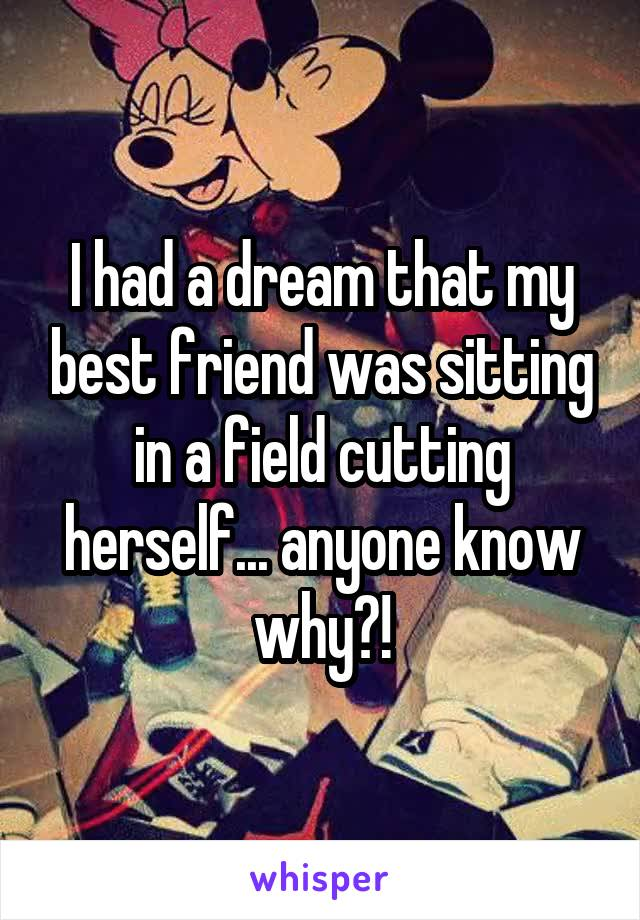 I had a dream that my best friend was sitting in a field cutting herself... anyone know why?!