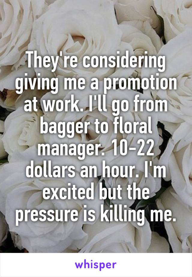 They're considering giving me a promotion at work. I'll go from bagger to floral manager. 10-22 dollars an hour. I'm excited but the pressure is killing me.