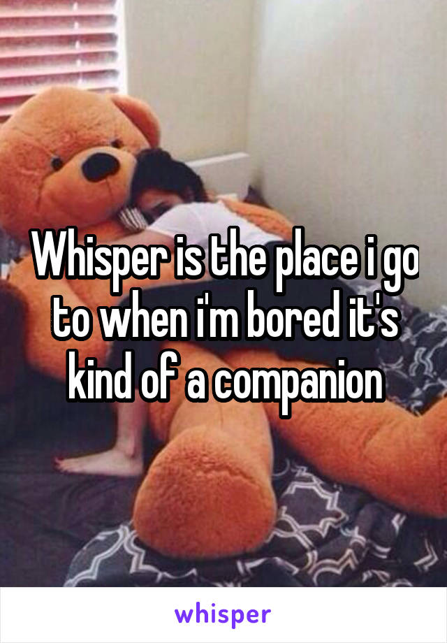 Whisper is the place i go to when i'm bored it's kind of a companion