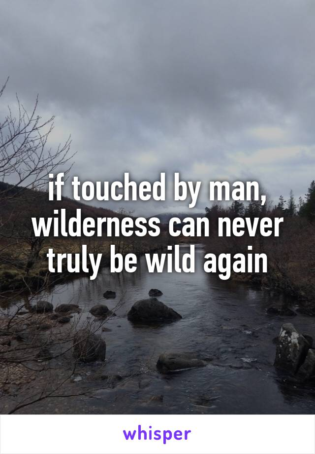 if touched by man, wilderness can never truly be wild again