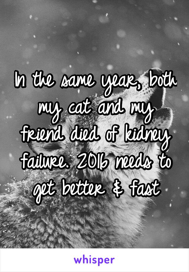 In the same year, both my cat and my friend died of kidney failure. 2016 needs to get better & fast