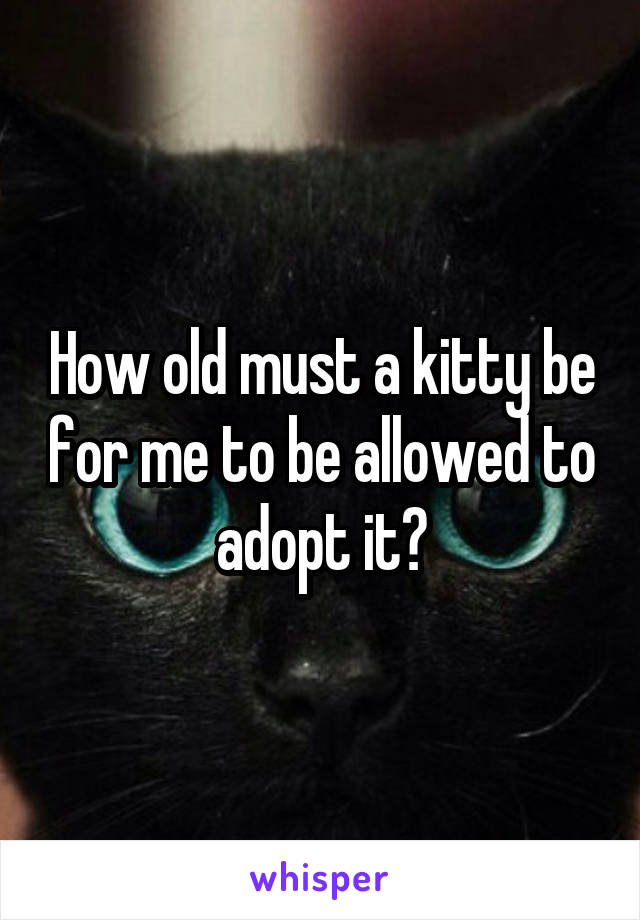 How old must a kitty be for me to be allowed to adopt it?