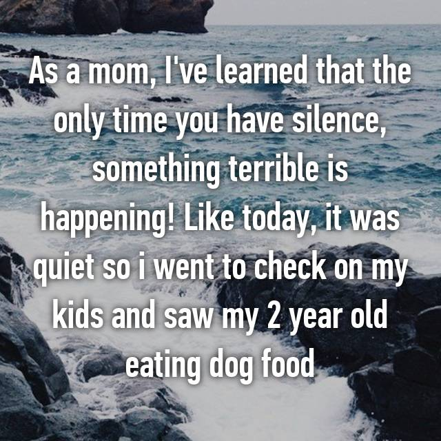 As a mom, I've learned that the only time you have silence, something terrible is happening! Like today, it was quiet so i went to check on my kids and saw my 2 year old eating dog food