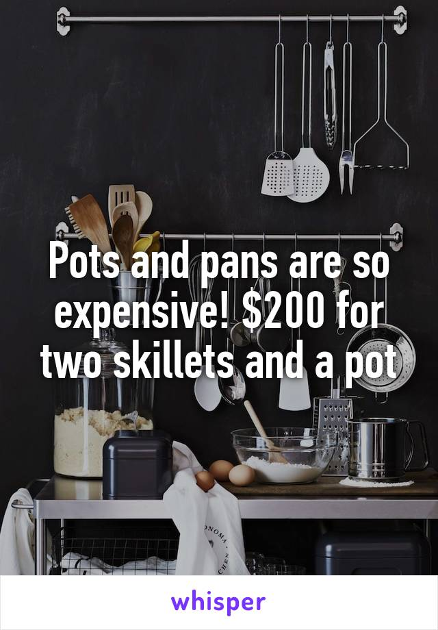 Pots and pans are so expensive! $200 for two skillets and a pot