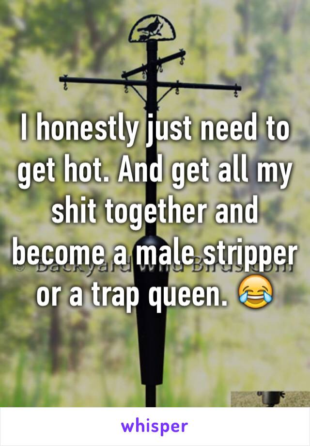 I honestly just need to get hot. And get all my shit together and become a male stripper or a trap queen. 😂