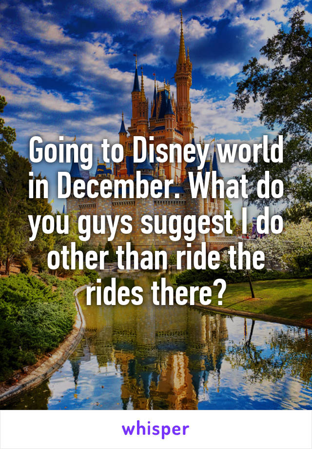 Going to Disney world in December. What do you guys suggest I do other than ride the rides there?