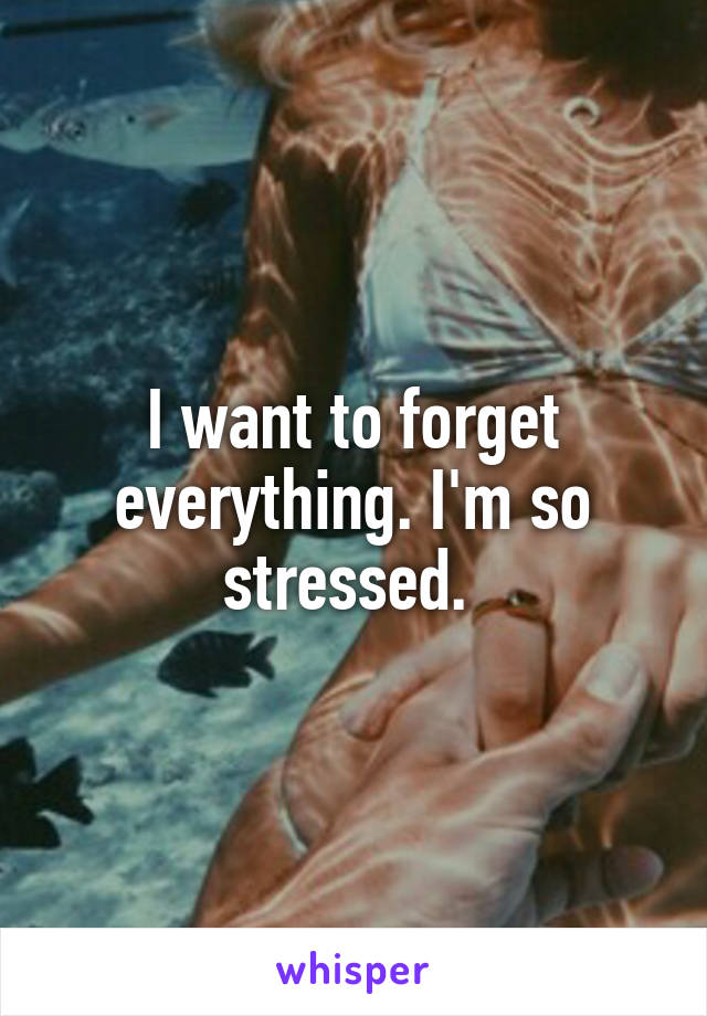 I want to forget everything. I'm so stressed.