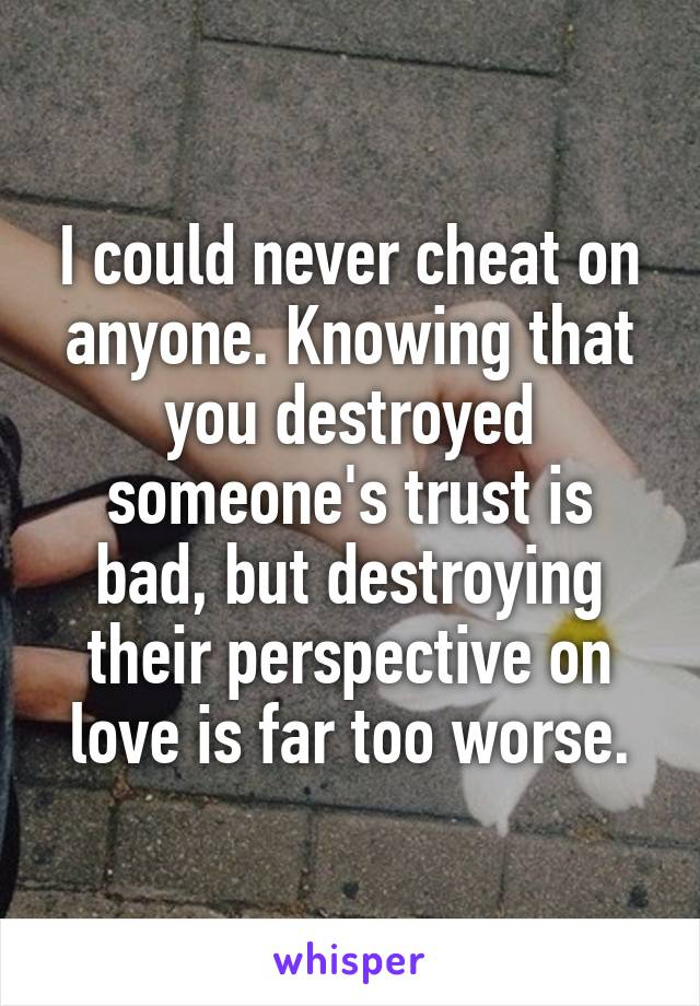 I could never cheat on anyone. Knowing that you destroyed someone's trust is bad, but destroying their perspective on love is far too worse.