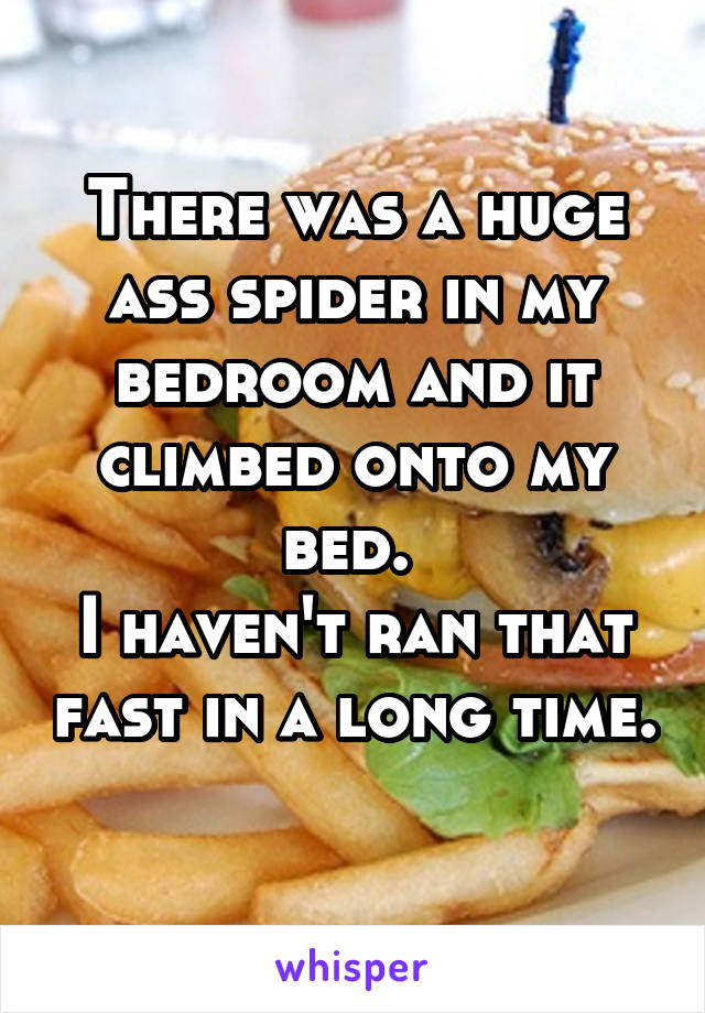 There was a huge ass spider in my bedroom and it climbed onto my bed.  I haven't ran that fast in a long time.