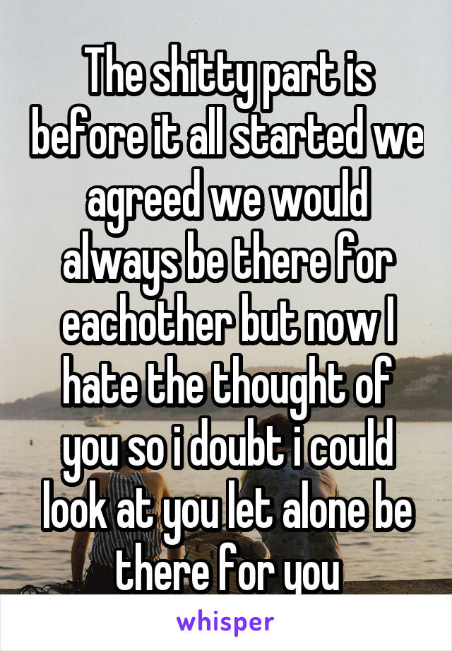 The shitty part is before it all started we agreed we would always be there for eachother but now I hate the thought of you so i doubt i could look at you let alone be there for you