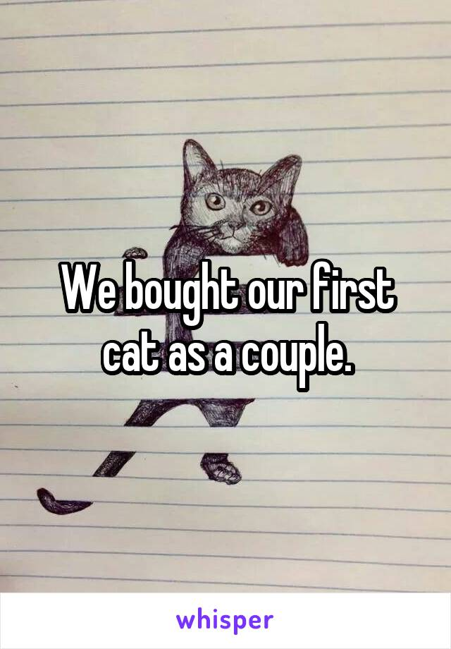 We bought our first cat as a couple.
