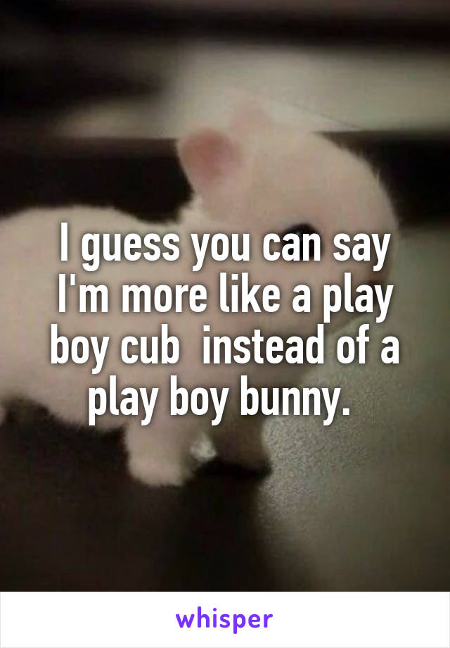 I guess you can say I'm more like a play boy cub  instead of a play boy bunny.
