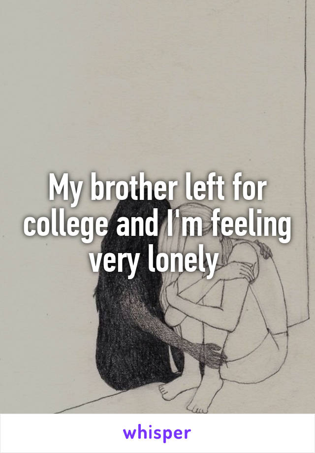My brother left for college and I'm feeling very lonely
