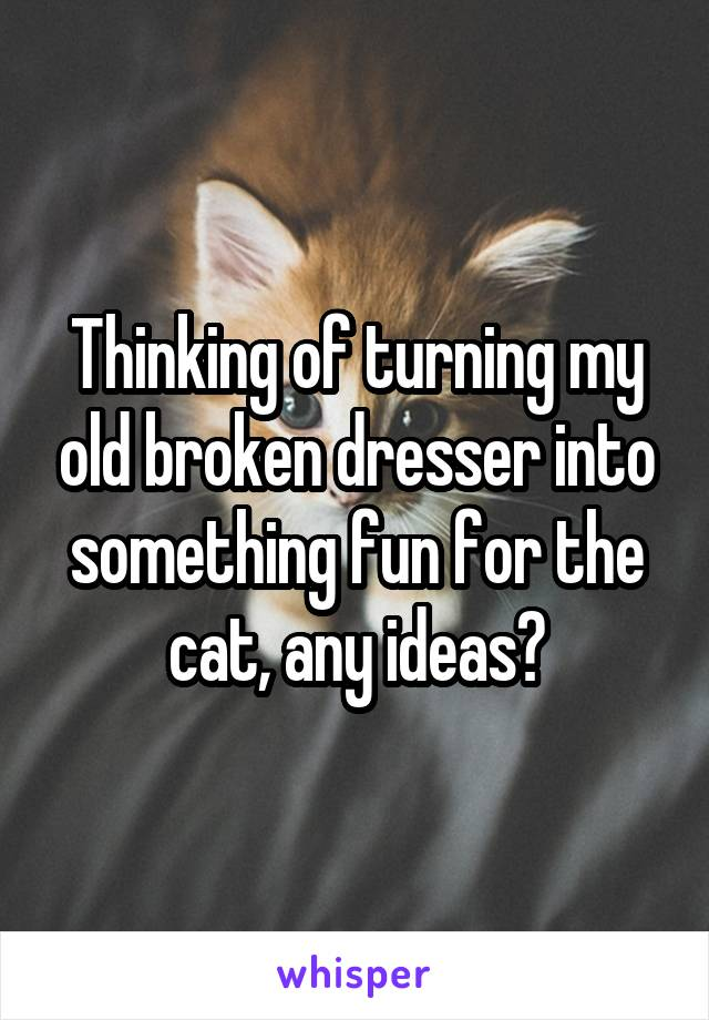 Thinking of turning my old broken dresser into something fun for the cat, any ideas?
