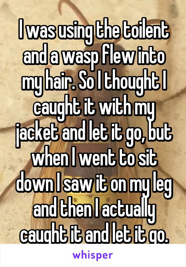 I was using the toilent and a wasp flew into my hair. So I thought I caught it with my jacket and let it go, but when I went to sit down I saw it on my leg and then I actually caught it and let it go.
