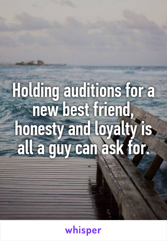 Holding auditions for a new best friend, honesty and loyalty is all a guy can ask for.