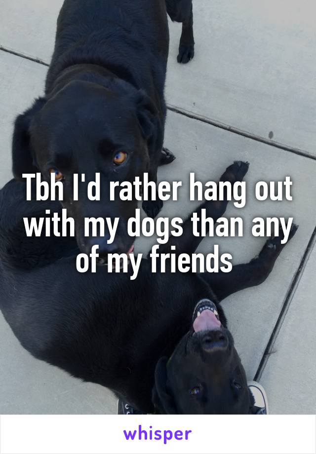 Tbh I'd rather hang out with my dogs than any of my friends