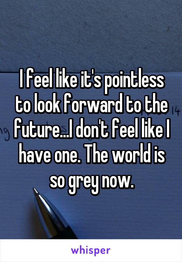 I feel like it's pointless to look forward to the future...I don't feel like I have one. The world is so grey now.
