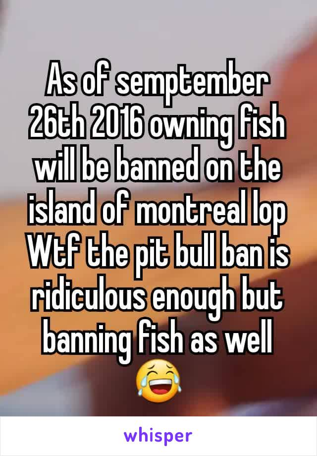As of semptember 26th 2016 owning fish will be banned on the island of montreal lop Wtf the pit bull ban is ridiculous enough but banning fish as well 😂