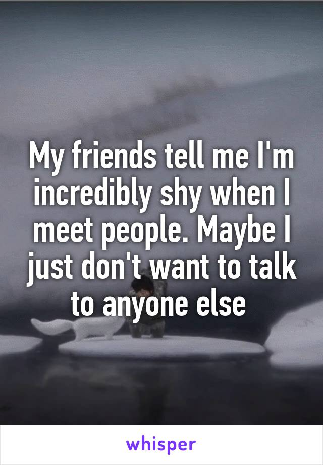 My friends tell me I'm incredibly shy when I meet people. Maybe I just don't want to talk to anyone else