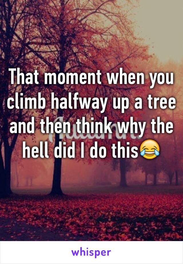 That moment when you climb halfway up a tree and then think why the hell did I do this😂