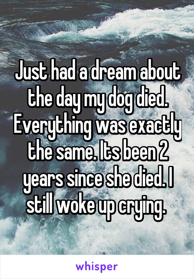 Just had a dream about the day my dog died. Everything was exactly the same. Its been 2 years since she died. I still woke up crying.
