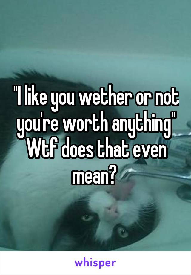 """I like you wether or not you're worth anything"" Wtf does that even mean?"